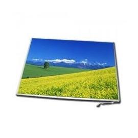 Display Laptop Fujitsu 12.1 Inch Wide Mat